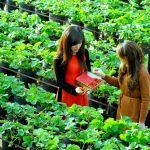 22 Cách kinh doanh gì ở nông thôn hiện nay làm giàu