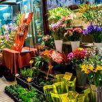 3 yếu tố giúp shop bán hoa tươi luôn đắt khách dù không phải ngày lễ?