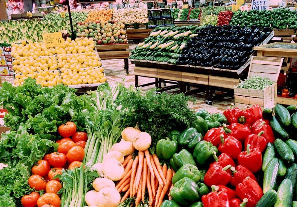 Kế hoạch kinh doanh làm giàu từ nông nghiệp hữu cơ ( P3)