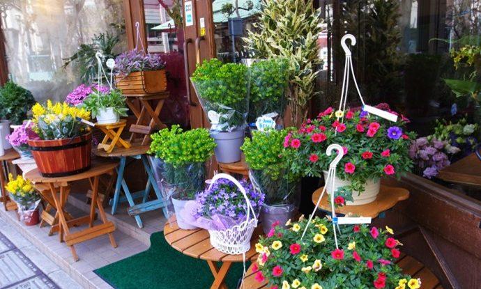 Chọn nơi thích hợp cho cửa hàng kinh doanh hoa tươi ?