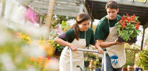 5 công việc làm thêm kiếm được tiền nhiều vào dịp cuối năm