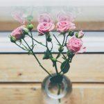 30 Câu nói chân lý, hiểu càng sớm thành công đến càng nhanh