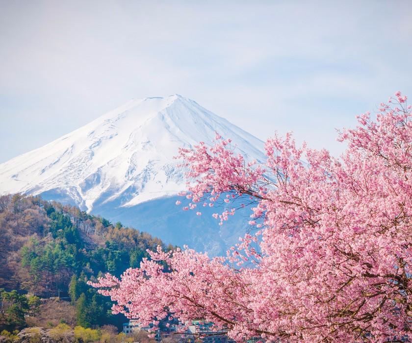Nghệ thuật và bí quyết kinh doanh của người Nhật
