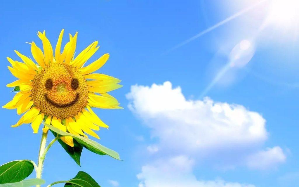 Sức mạnh to lớn tiềm ẩn phía sau mỗi nụ cười mà không phải ai cũng biết