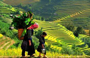 Kinh doanh gì ở Huyện miền núi tại Việt Nam là phù hợp