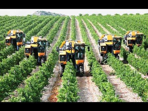 Làm nông nghiệp ở Mỹ và cuộc sống nông thôn ở Mỹ