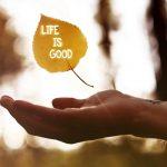 Những câu nói hay về bản thân tăng thêm động lực sống ý nghĩa