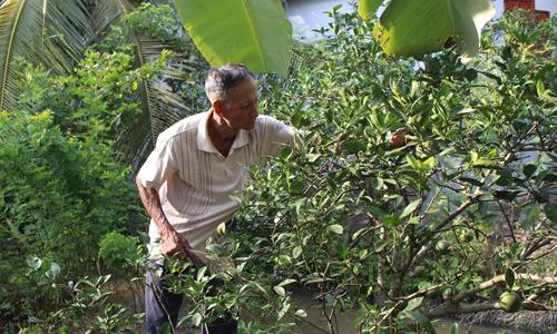 Thủ lĩnh nông dân ghi điểm nhờ mô hình kinh tế giỏi và ý thức giúp đỡ cộng đồng