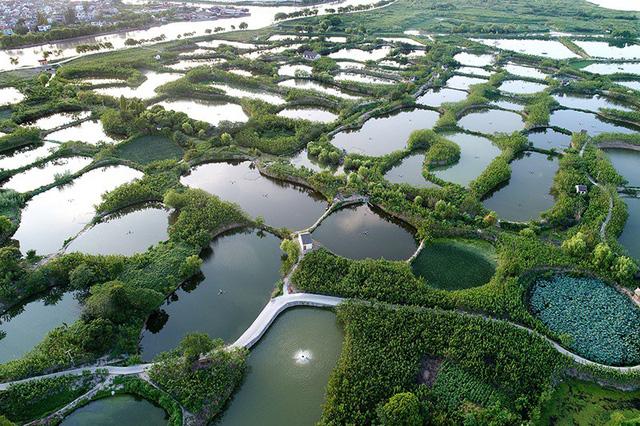 Không dựa dẫm vào thiên nhiên, người dân Trung Quốc tự nuôi sống mình bằng những mô hình chăn nuôi, sản xuất nhân tạo