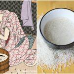 Tác dụng nước vo gạo với tóc-Cách gội đầu bằng nước vo gạo