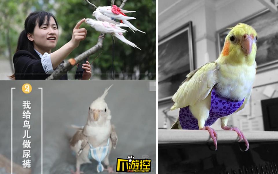 Kinh doanh sản phẩm lạ đời, cô gái trẻ Trung Quốc thu được hơn 1000 đơn hàng mỗi tháng