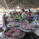Cần mua Hải sản số lượng lớn thì nhập ở đâu tại Việt Nam?