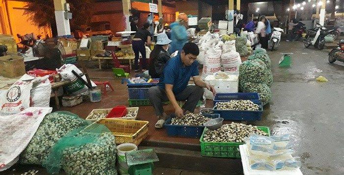 Chợ Đầu mối Hải Sản ở Thanh Hóa và tìm kiếm những nơi buôn sỉ Hải Sản lân cận
