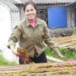 Nghèo không đủ ăn, bắt đầu từ 1 triệu thực hiện ý tưởng tại nhà thu về 7 tỷ, cách làm dựa trên đặc trưng Văn hóa không thể thiếu của người Việt