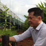 Anh ấy là người đầu tiên ở Việt Nam khai thác mới được một mô hình làm giàu từ nông nghiệp (từ trồng Cây đàn hương xen canh)