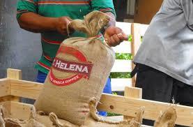 Khởi nghiệp với Cafe, 6 loại Cafe bán được ưa chuộng có giá trên 25 triệu 1 kg