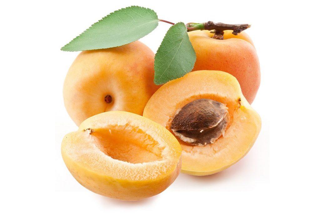 Làm giàu từ nông nghiệp 4.0: Trồng cây cho trái thu 700 triệu 1 năm