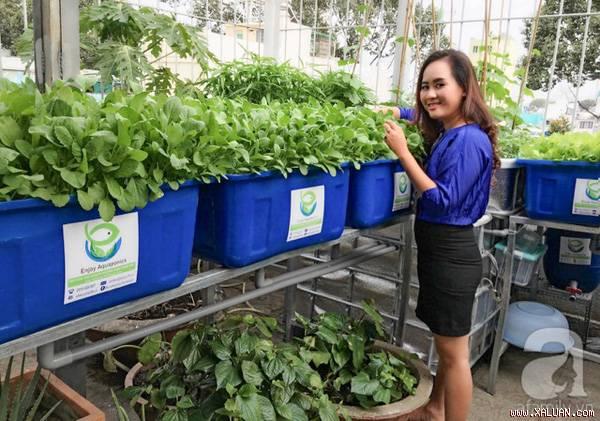 Hệ thống trồng rau sạch thu 2 tỷ mỗi tháng (ý tưởng tại Sài Gòn)