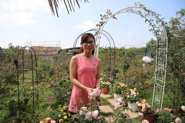 Hoa Hồng đẹp, cô gái tận dụng vẻ đẹp của Hoa hồng khởi nghiệp trở thành tỷ phú