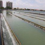 Mô hình kinh doanh nước sạch ở Việt Nam, lời lãi ra sao