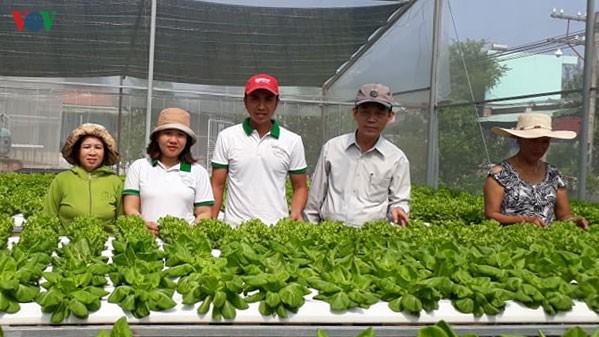 Mô hình trồng rau công nghệ cao (mỗi năm lãi 600 triệu), ý tưởng thành công ở nhiều nơi