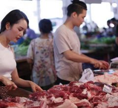 Cô gái áp dụng tư duy đại học vào kinh doanh thịt lợn