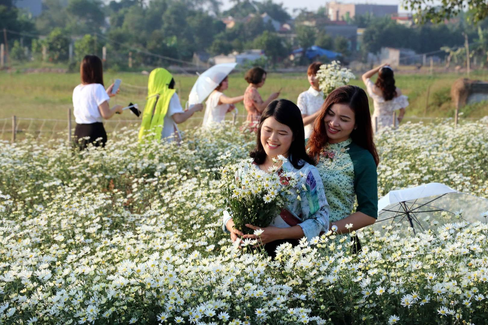 Ý tưởng trồng nhà vườn Hoa, sau đó cho khách thuê chụp ảnh thu 10 triệu/ngày