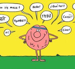 Ý tưởng để học 2 ngoại ngữ cùng lúc