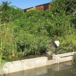 Ý tưởng khởi nghiệp công nghệ nước thông minh