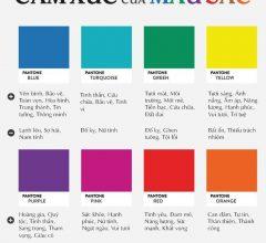 Các ý tưởng được tạo ra khi kết hợp Màu sắc với cảm xúc