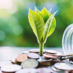 Ý tưởng đầu tư gì để có tiền hót nhất năm 2020