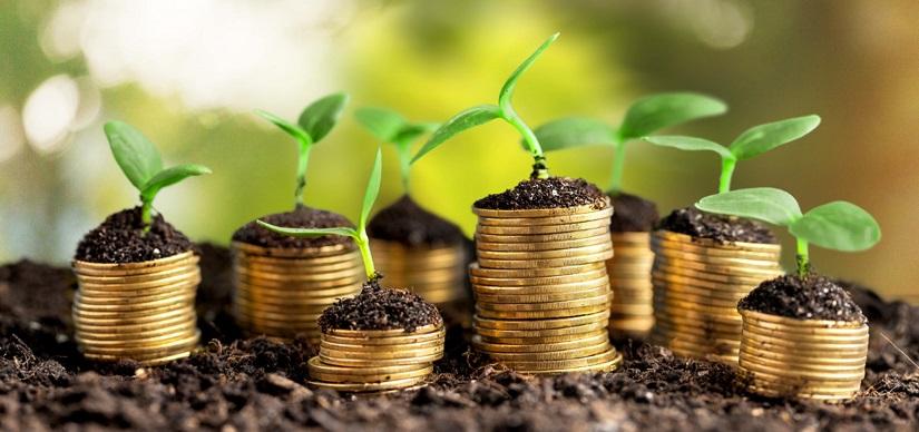 Ý tưởng Cách đầu tư nhỏ hiệu quả kiếm tiền dễ