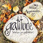 Tổng hợp những câu nói về sự biết ơn hay và ý nghĩa nhất